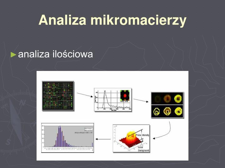 Analiza mikromacierzy