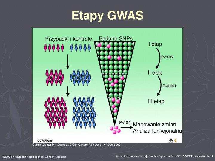Etapy GWAS