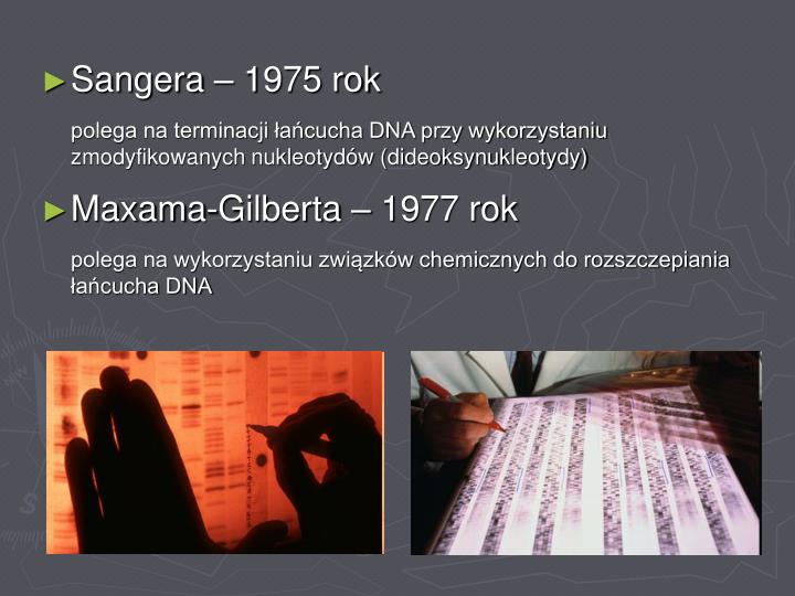 Sangera – 1975 rok