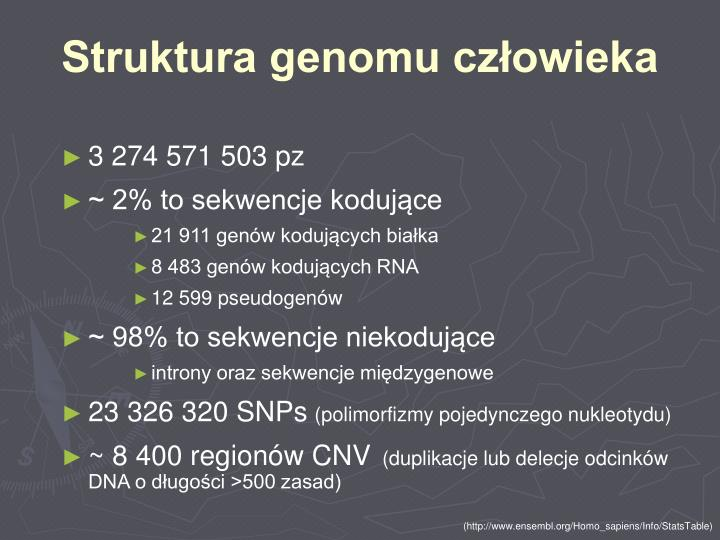 Struktura genomu człowieka