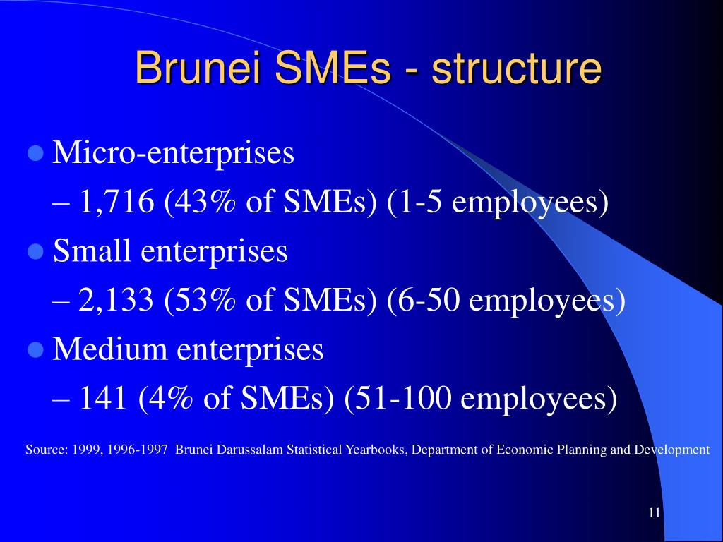 Brunei SMEs - structure