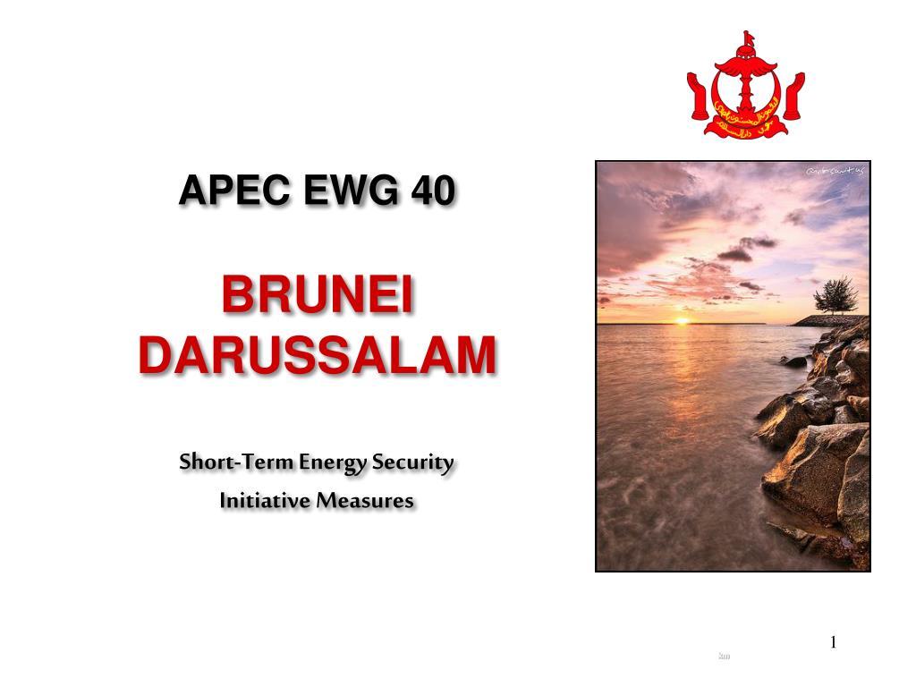 APEC EWG 40