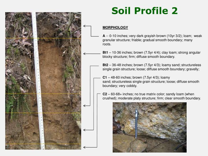 Soil profile images reverse search for Soil classification
