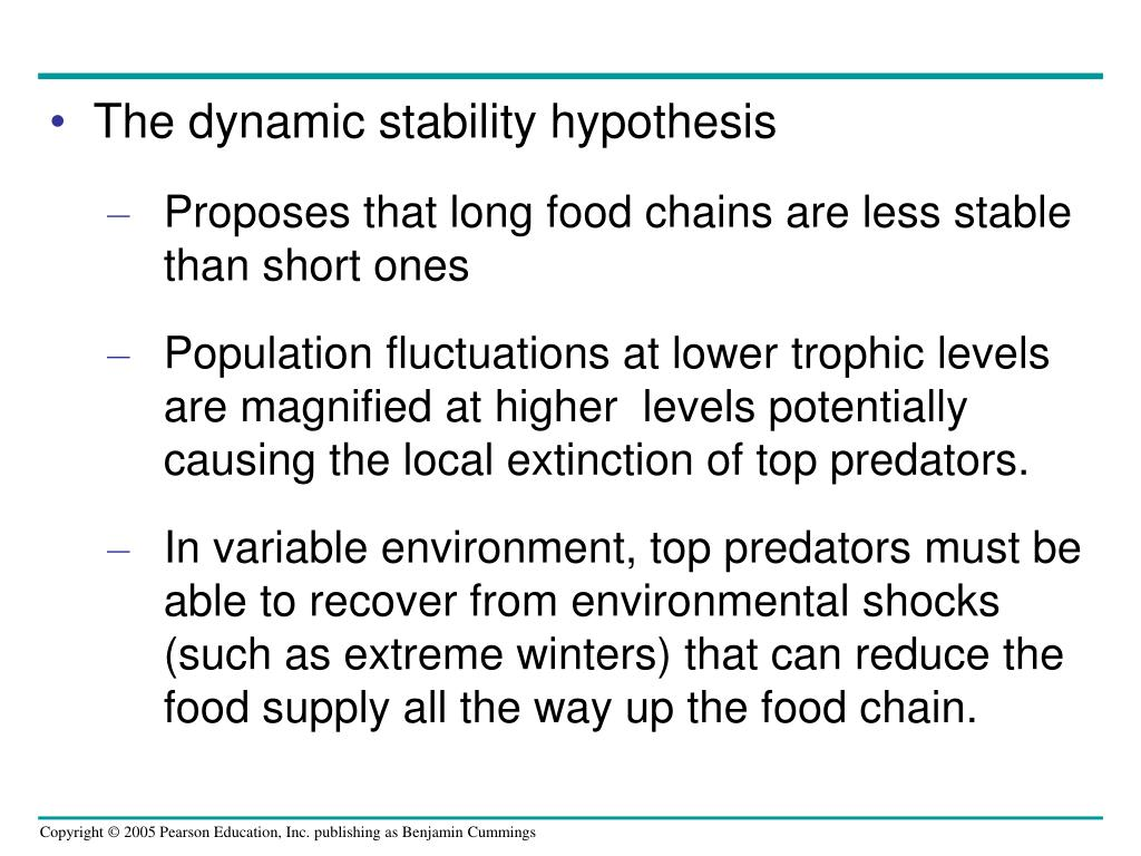 The dynamic stability hypothesis