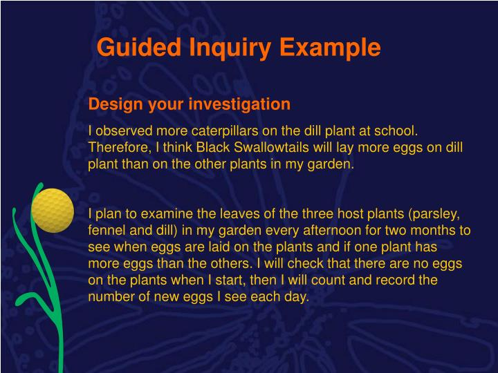 Guided Inquiry Example