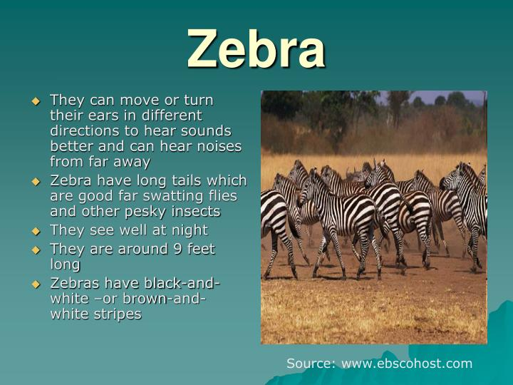 They can move or turn their ears in different directions to hear sounds better and can hear noises from far away