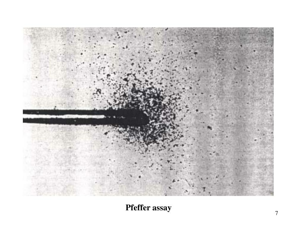 Pfeffer assay