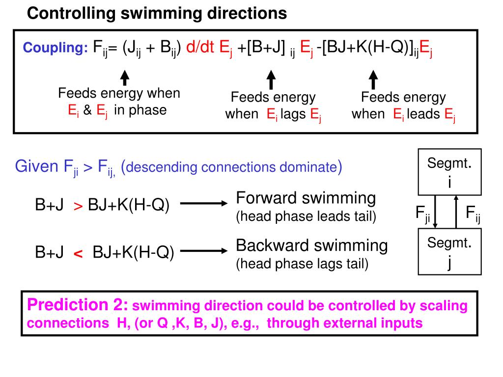 Controlling swimming directions
