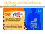 http kitses com animation swfs digestion swf1