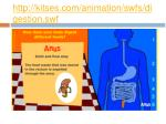 http kitses com animation swfs digestion swf6