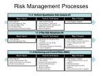 risk management processes1