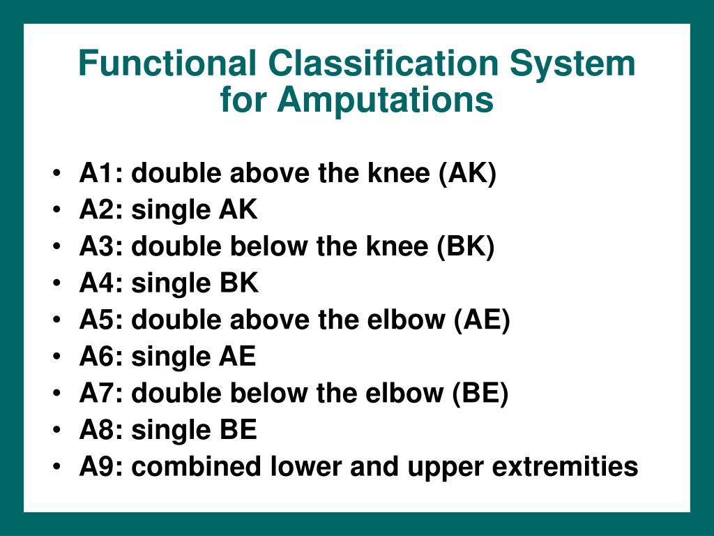 Functional Classification System