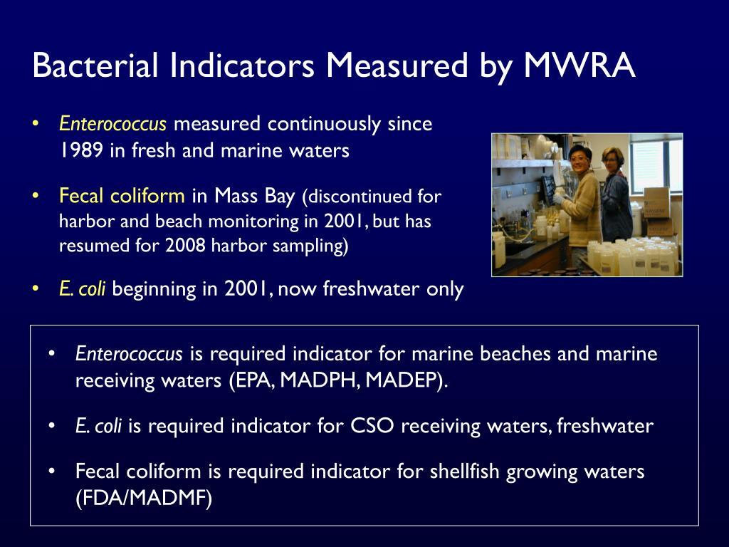 Bacterial Indicators Measured by MWRA
