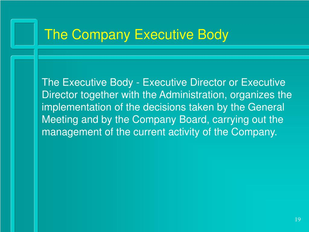 The Company Executive Body