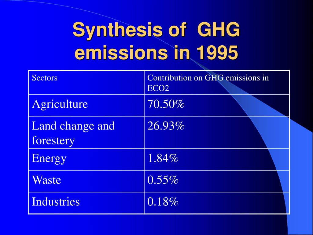 Synthesis of  GHG emissions in 1995
