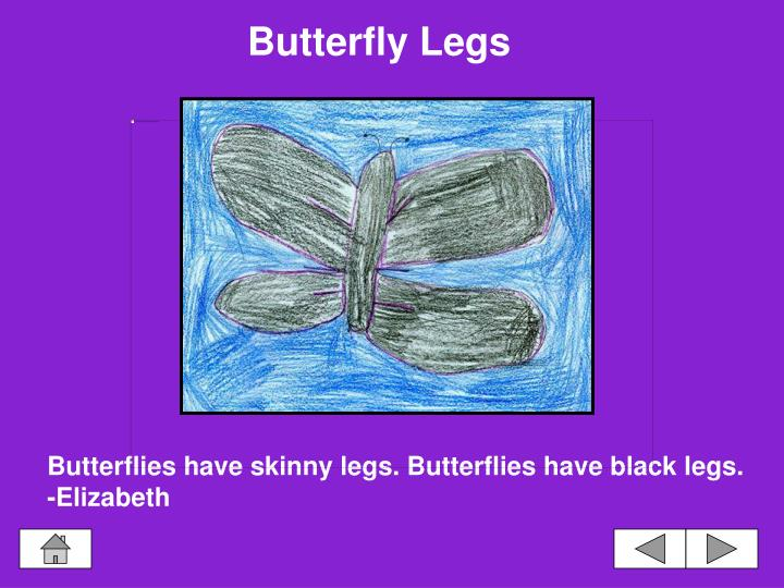 Butterfly Legs