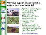 why give support to a sustainable natural resources in benin