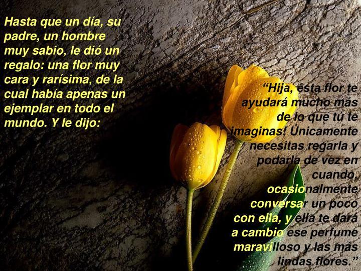 Hasta que un día, su padre, un hombre muy sabio, le dió un regalo: una flor muy cara y rarísima, de la cual había apenas un ejemplar en todo el mundo. Y le dijo:
