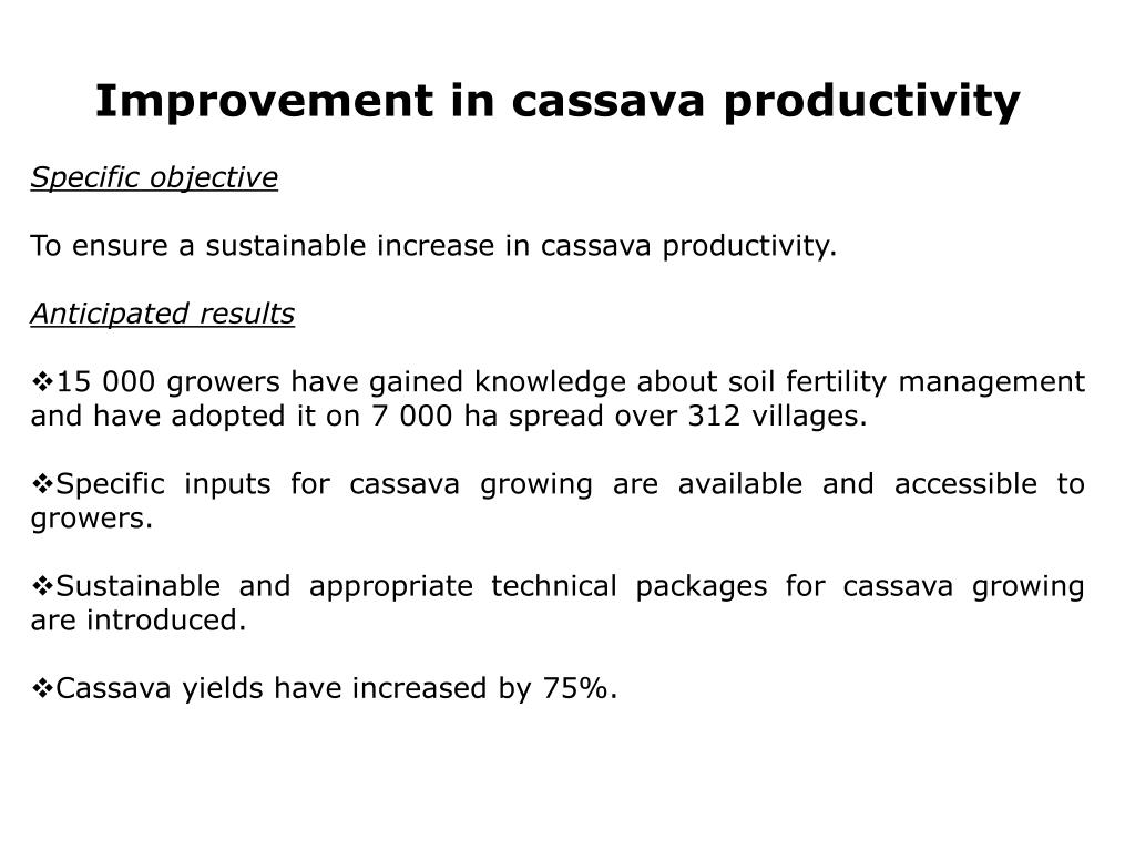 Improvement in cassava productivity