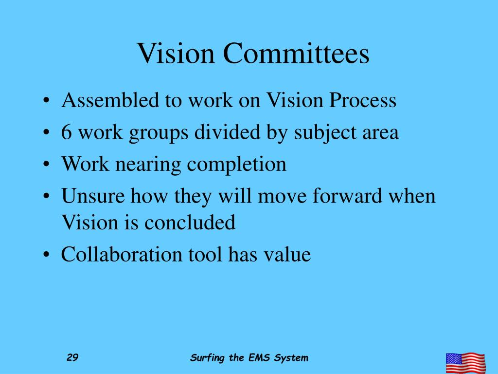 Vision Committees