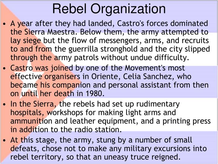 Rebel Organization