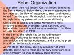 rebel organization