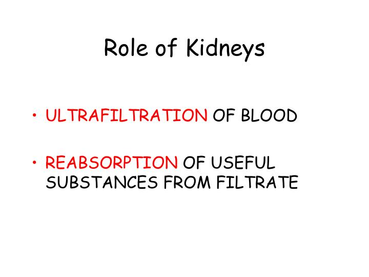 Role of Kidneys