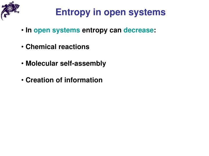 Entropy in open systems