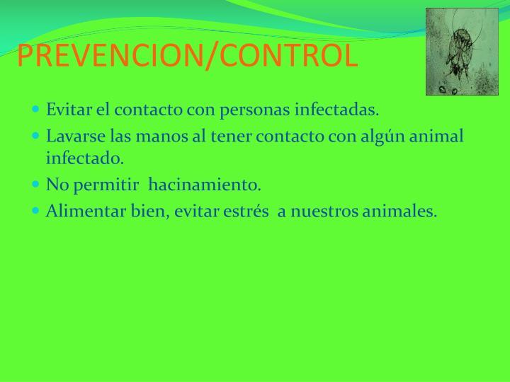 PREVENCION/CONTROL