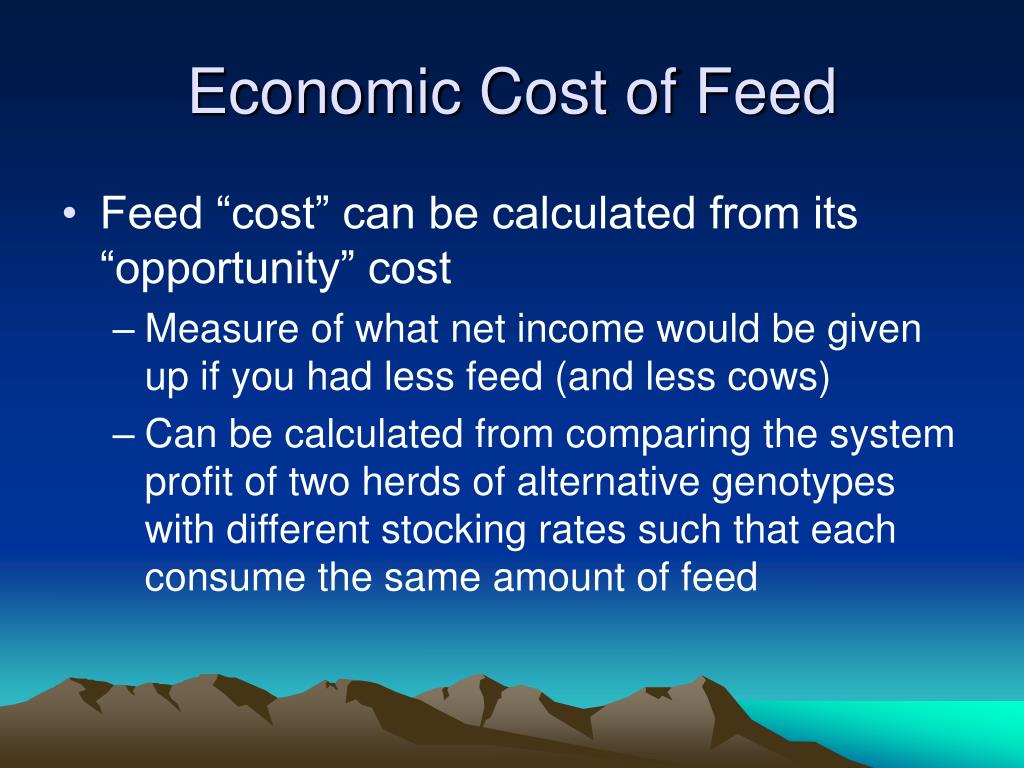 Economic Cost of Feed
