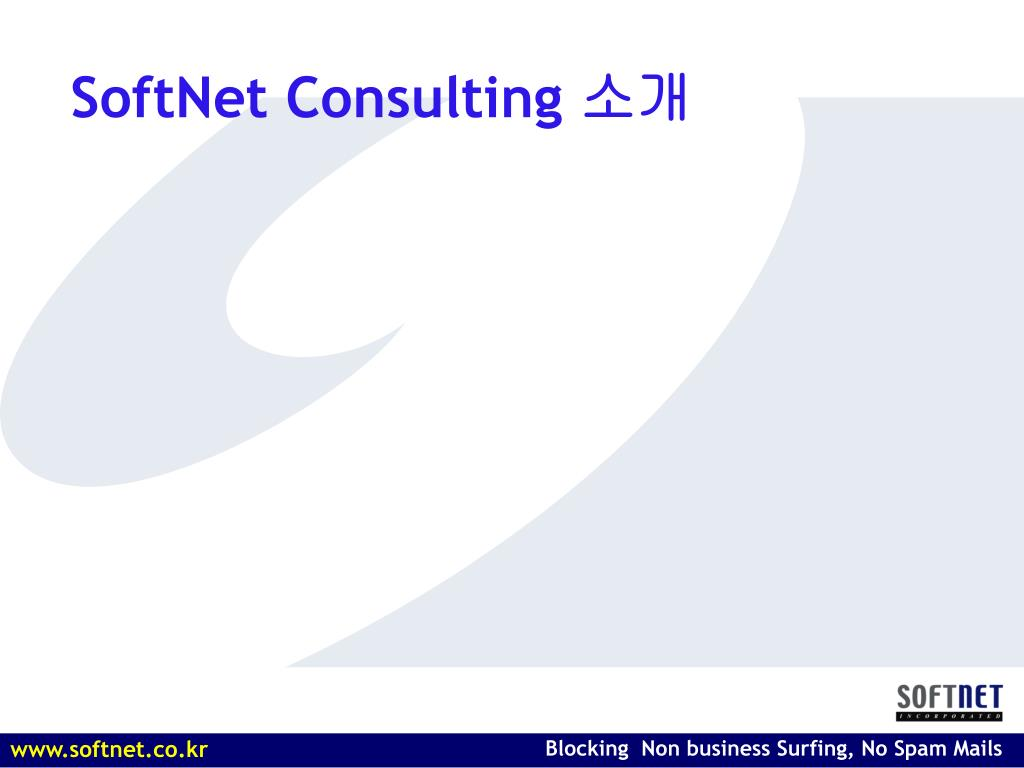 SoftNet Consulting