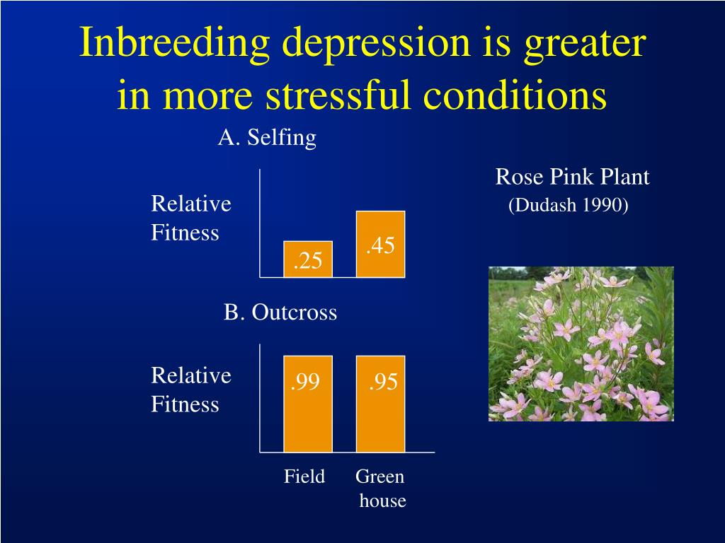Inbreeding depression is greater in more stressful conditions