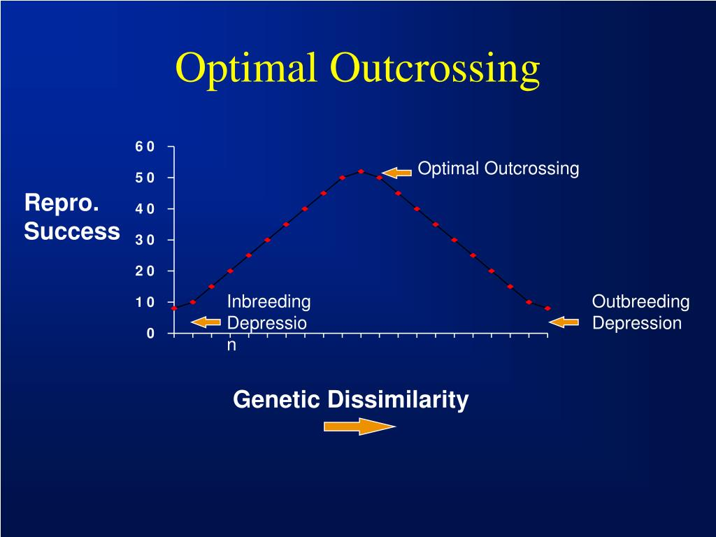 Optimal Outcrossing