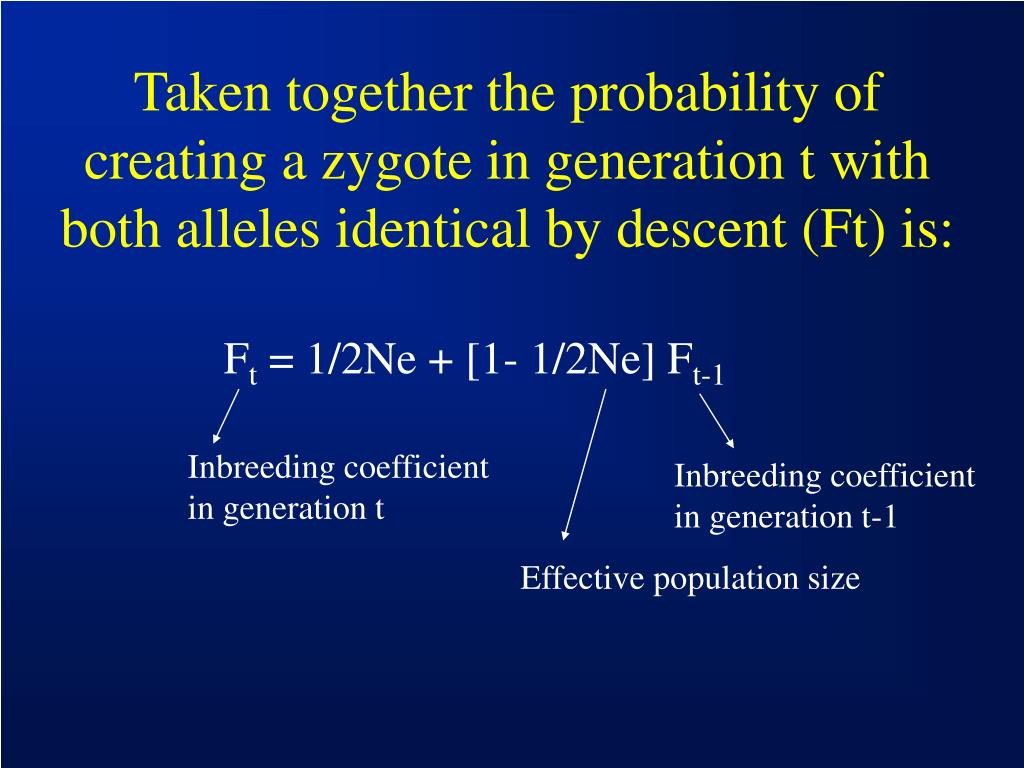 Taken together the probability of creating a zygote in generation t with both alleles identical by descent (Ft) is: