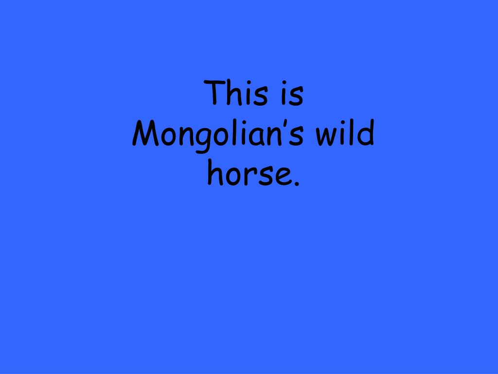 This is Mongolian's wild horse.