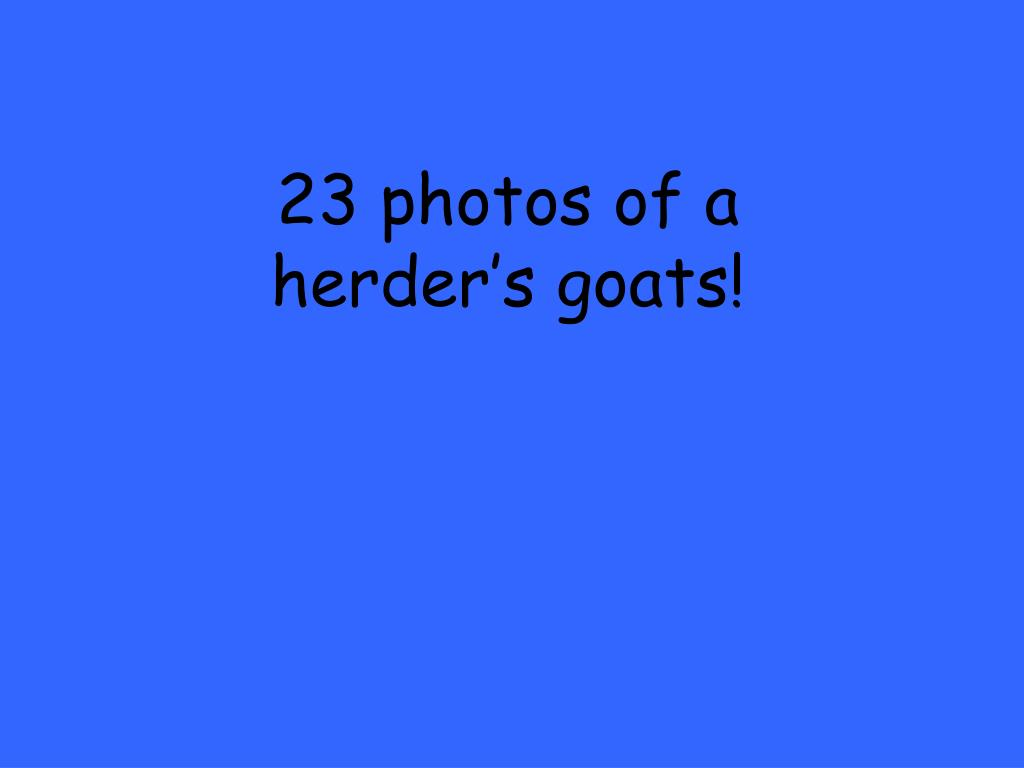 23 photos of a herder's goats!