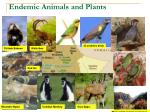 endemic animals and plants