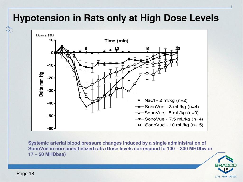 Hypotension in Rats only at High Dose Levels