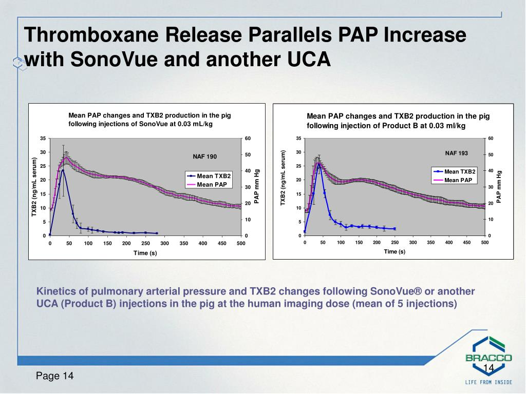 Thromboxane Release Parallels PAP Increase