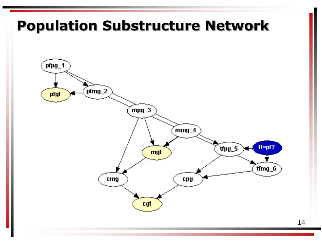 Population Substructure Network