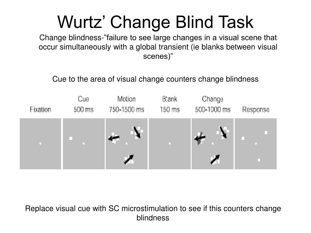 Wurtz' Change Blind Task