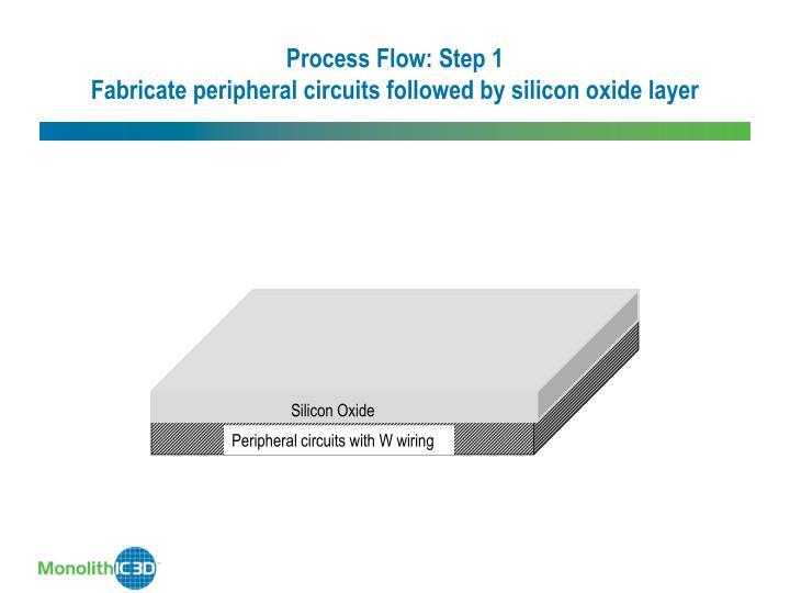 Process Flow: Step 1