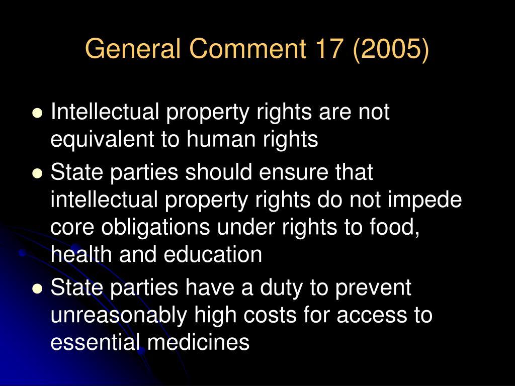 General Comment 17 (2005)