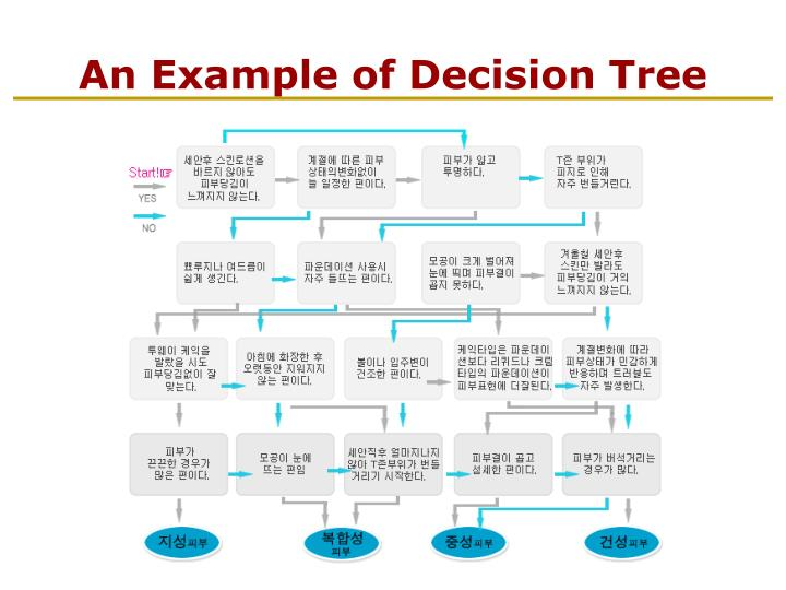 An Example of Decision Tree