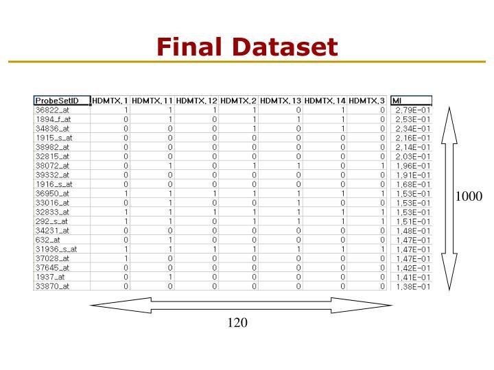 Final Dataset