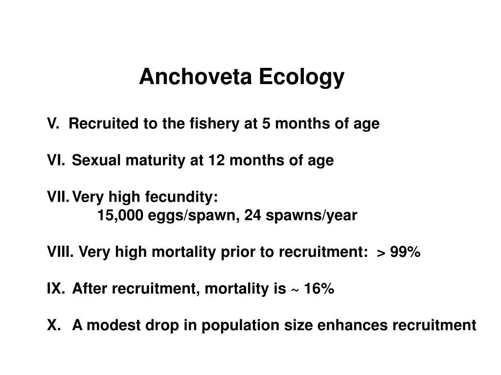 Anchoveta Ecology