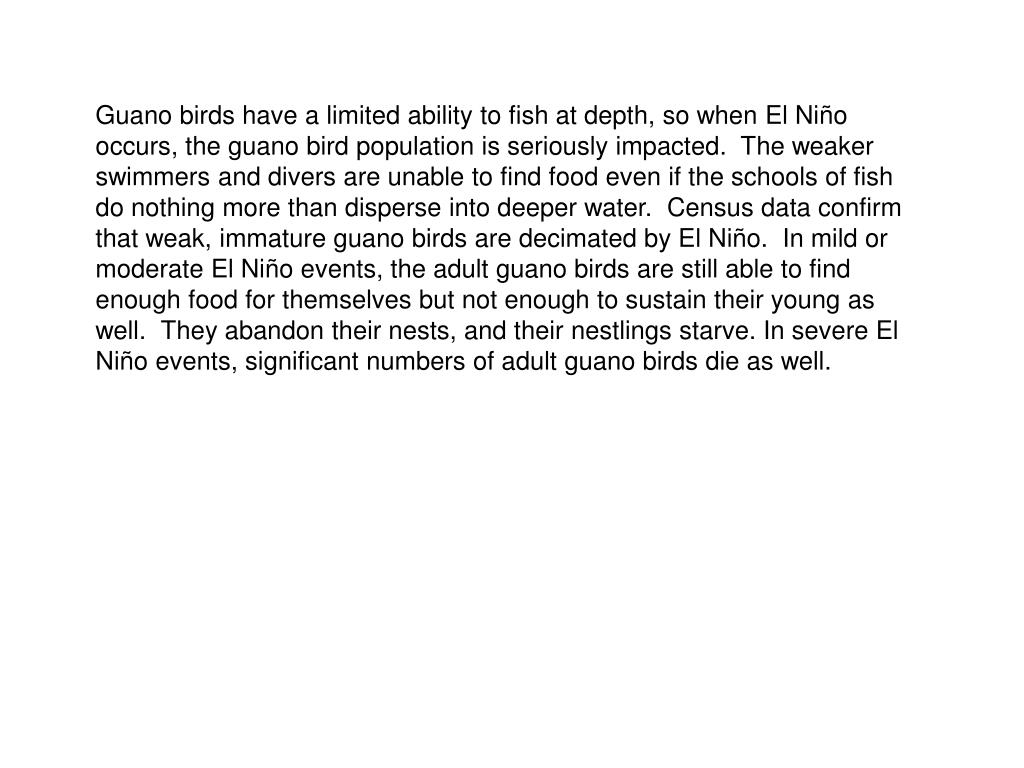 Guano birds have a limited ability to fish at depth, so when El Niño occurs, the guano bird population is seriously impacted.  The weaker swimmers and divers are unable to find food even if the schools of fish do nothing more than disperse into deeper water.  Census data confirm that weak, immature guano birds are decimated by El Niño.  In mild or moderate El Niño events, the adult guano birds are still able to find enough food for themselves but not enough to sustain their young as well.  They abandon their nests, and their nestlings starve. In severe El Niño events, significant numbers of adult guano birds die as well.