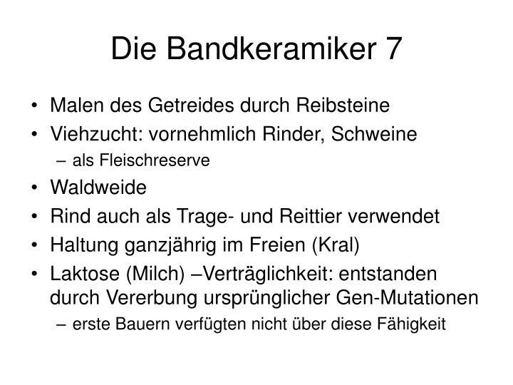 Die Bandkeramiker 7