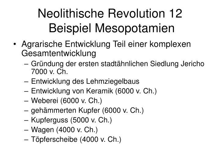 Neolithische Revolution 12