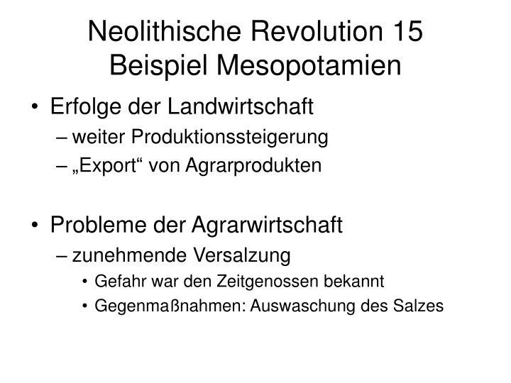 Neolithische Revolution 15